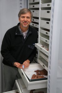Ted Daeschler, vice president for collections at the Academy of Natural Sciences and an associate professor in Drexel's College of Arts and Sciences, with Tiktaalik fossils
